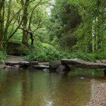 Forêt légendaire d'Huelgoat